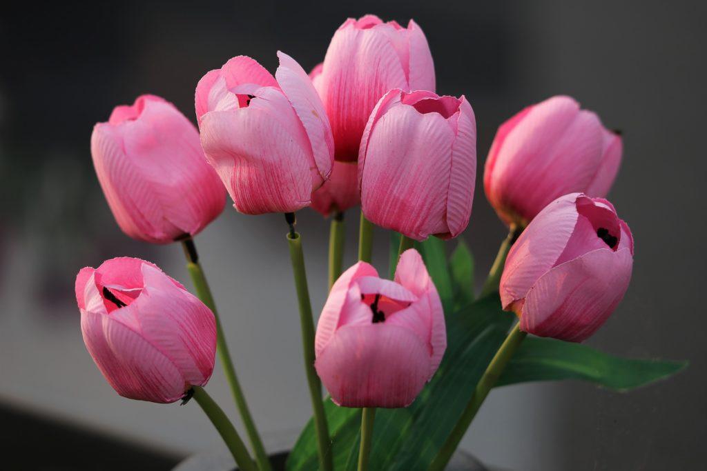 Sztuczne kwiaty w salonie – jakie wybrać?